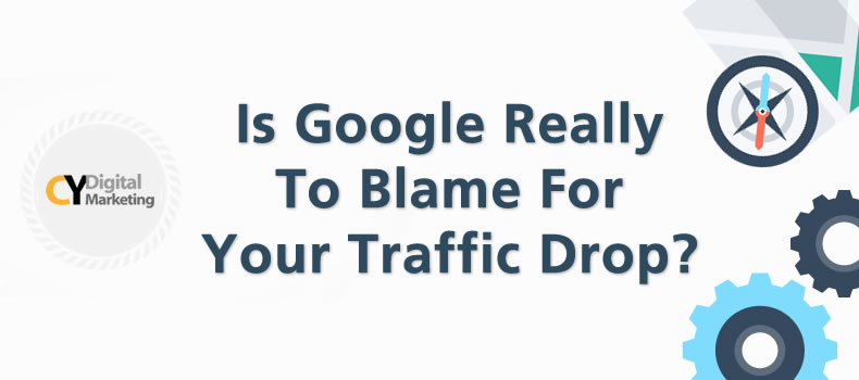 Is Google Really To Blame For Your Traffic Drop