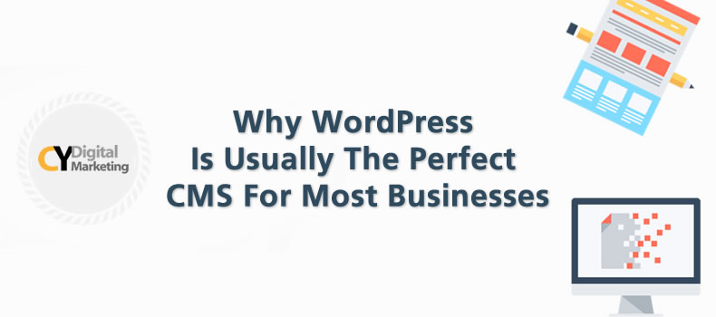 Why WordPress is Usually The Perfect CMS For Most Businesses
